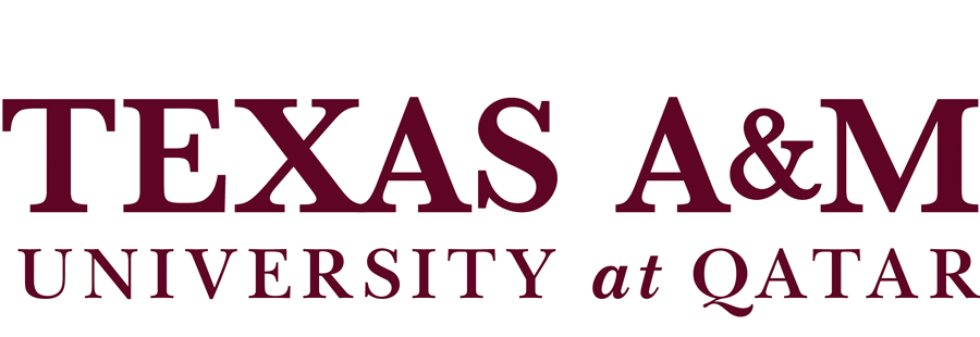 Chair and Professor, Mechanical Engineering Program at Texas