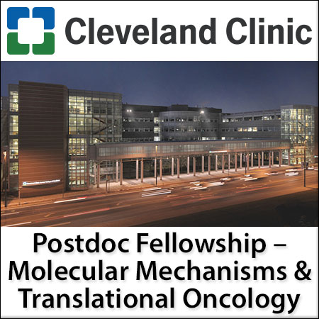 Postdoctoral Fellowship Position in Molecular Mechanisms and Translational Oncology