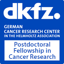 Postdoctoral Fellowships in Cancer Research at the German Cancer Research Center (DKFZ)