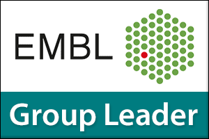 Group Leader - New Approaches in Electron Microscopy