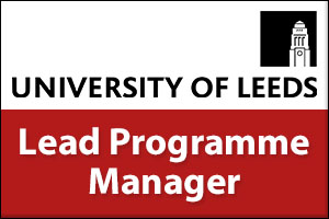 Lead Programme Manager