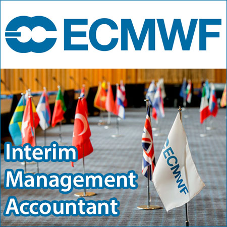 Interim Management Accountant
