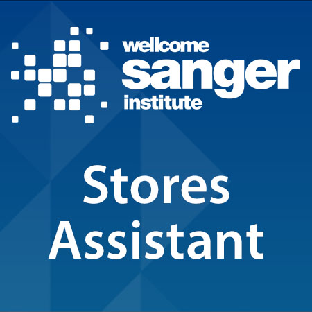 Stores Assistant
