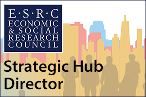 Strategic Hub Director