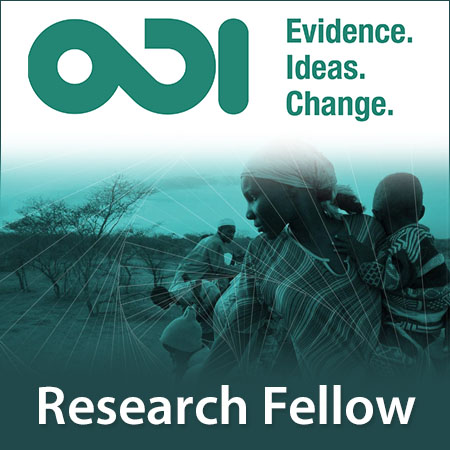 Senior Research Fellow/Research Fellow