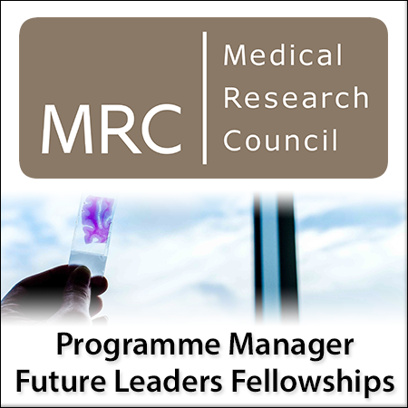 Programme Manager - Future Leaders Fellowships