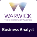 Business Analyst (80011-027)