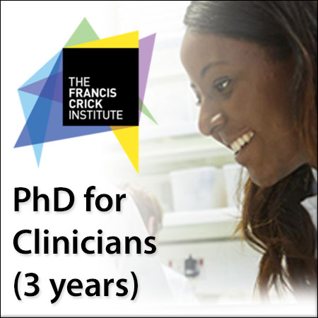 PhD for Clinicians (3 years)