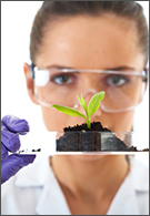Agriculture jobs - young lab assistant holds small flat dish with plant